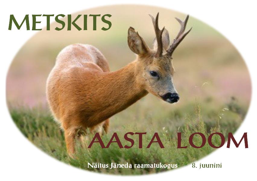(Eesti) Metskits — aasta loom