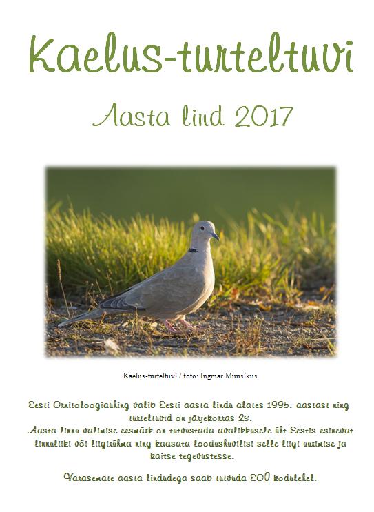 (Eesti) Kaelus-turteltuvi, aasta lind 2017