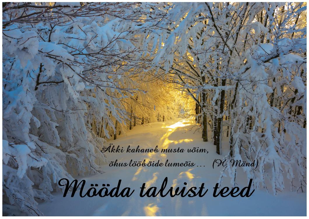 Mööda talvist teed
