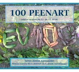 100 peenart