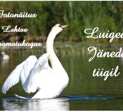 (Eesti) Luiged Jäneda tiigil