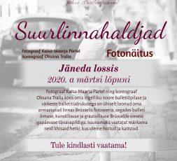 (Eesti) Suurlinnahaldjad